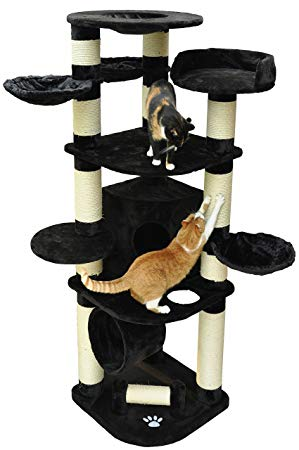 arbre a chat geant