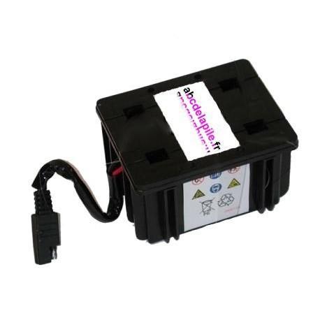 batterie pour tondeuse à gazon