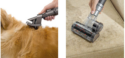 brosse animaux dyson